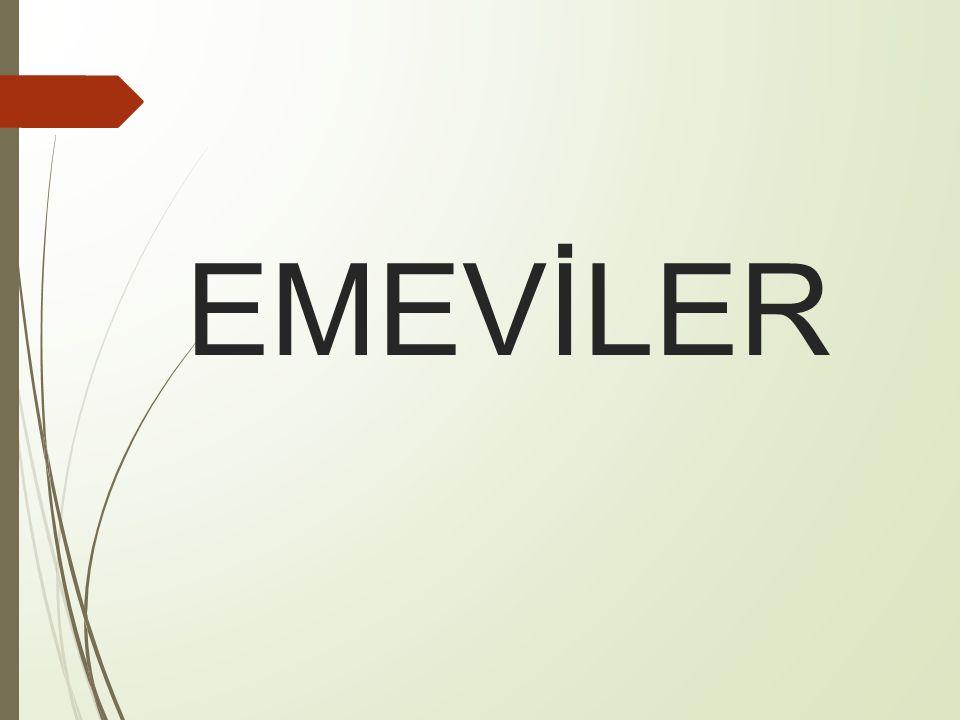 EMEVİLER
