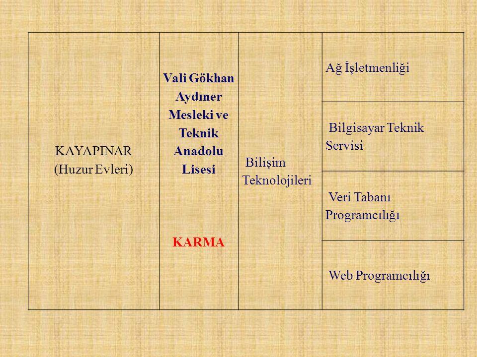 Vali Gökhan Aydıner Mesleki ve Teknik Anadolu Lisesi
