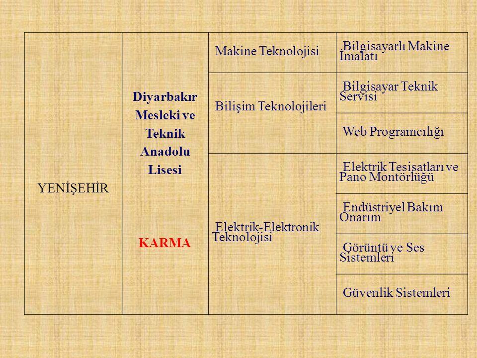 Diyarbakır Mesleki ve Teknik Anadolu Lisesi
