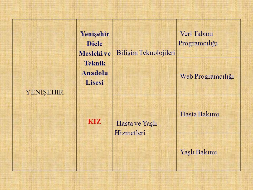 Yenişehir Dicle Mesleki ve Teknik Anadolu Lisesi
