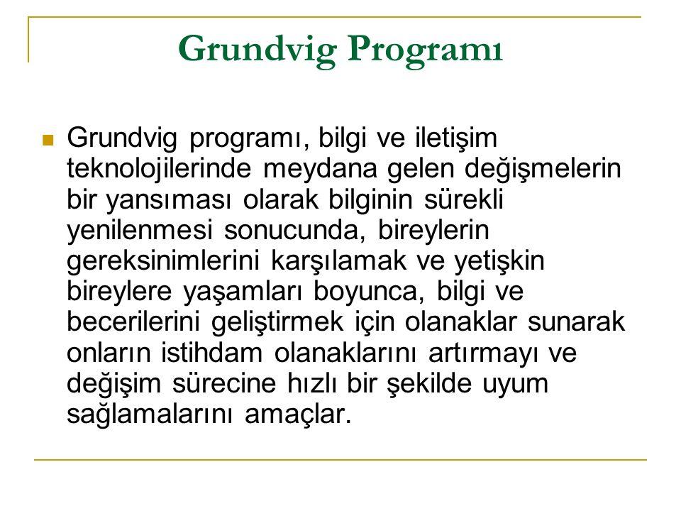 Grundvig Programı