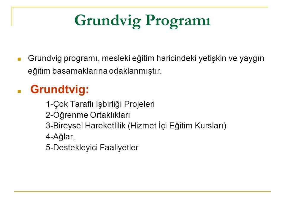 Grundvig Programı Grundvig programı, mesleki eğitim haricindeki yetişkin ve yaygın eğitim basamaklarına odaklanmıştır.