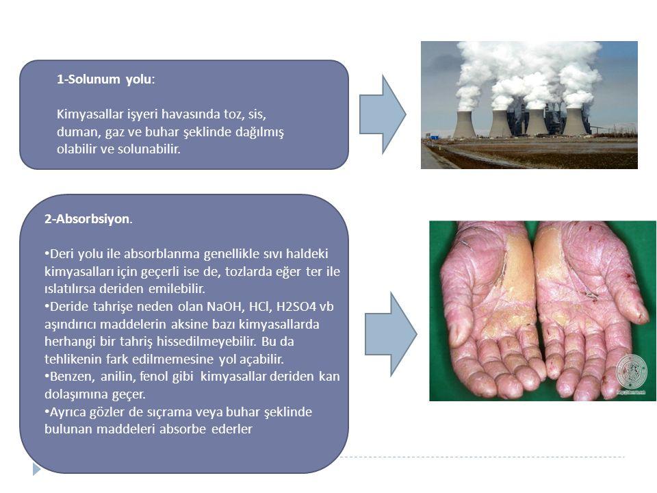 1-Solunum yolu: Kimyasallar işyeri havasında toz, sis, duman, gaz ve buhar şeklinde dağılmış olabilir ve solunabilir.