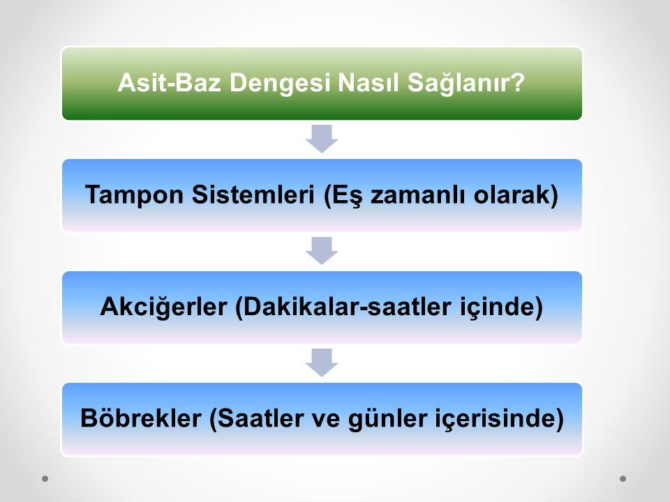 Asit-Baz Dengesi Nasıl Sağlanır Tampon Sistemleri (Eş zamanlı olarak)
