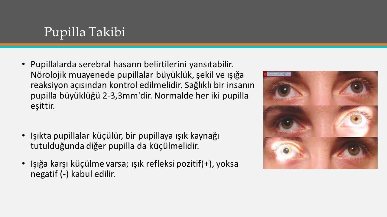 Pupilla Takibi