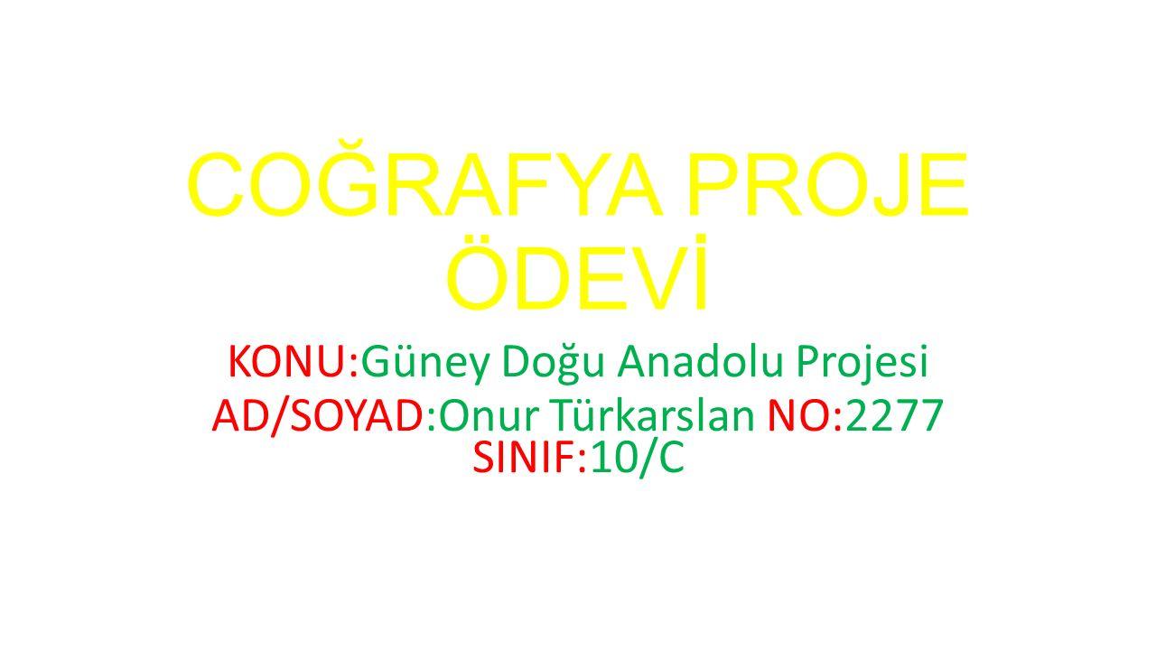 COĞRAFYA PROJE ÖDEVİ KONU:Güney Doğu Anadolu Projesi