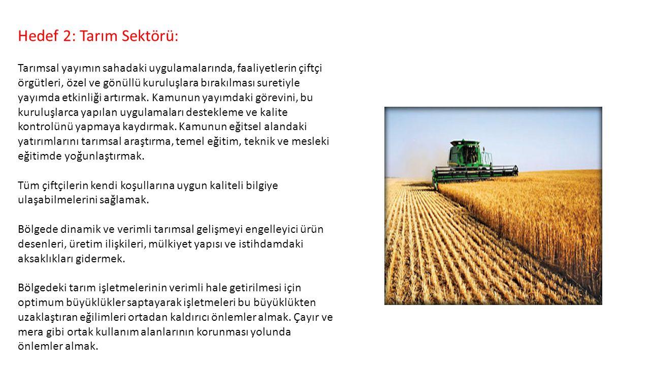 Hedef 2: Tarım Sektörü: