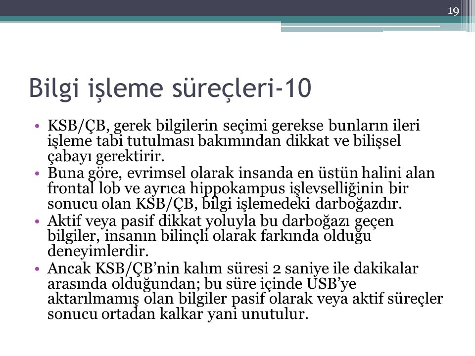 Bilgi işleme süreçleri-10