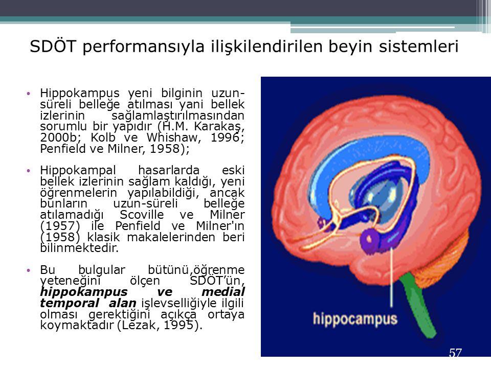 SDÖT performansıyla ilişkilendirilen beyin sistemleri