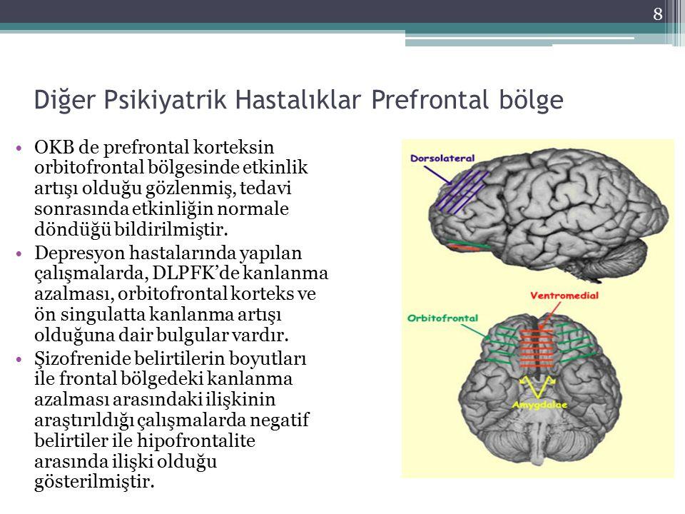 Diğer Psikiyatrik Hastalıklar Prefrontal bölge