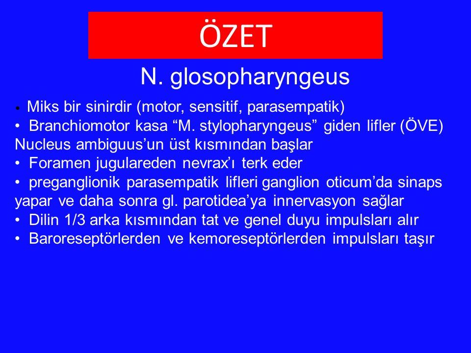ÖZET N. glosopharyngeus