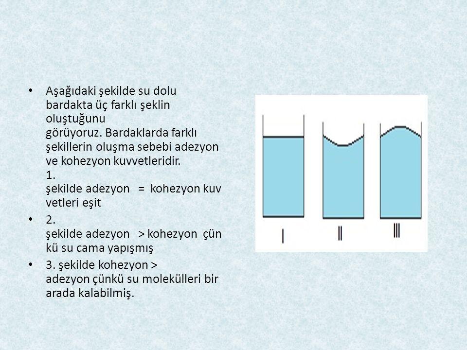Aşağıdaki şekilde su dolu bardakta üç farklı şeklin oluştuğunu görüyoruz. Bardaklarda farklı şekillerin oluşma sebebi adezyon ve kohezyon kuvvetleridir. 1. şekilde adezyon = kohezyon kuvvetleri eşit