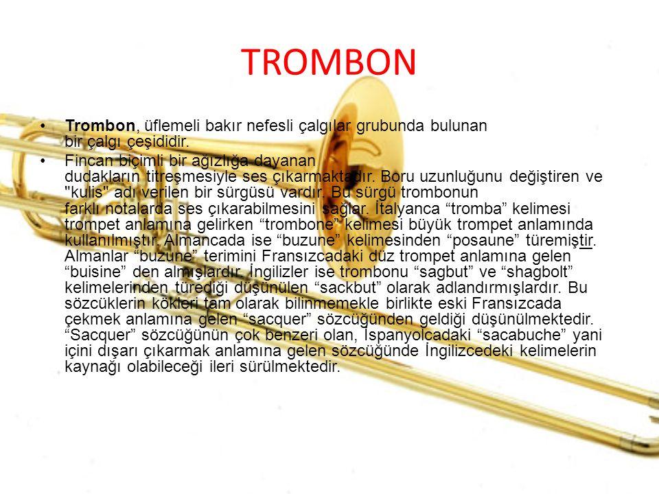 TROMBON Trombon, üflemeli bakır nefesli çalgılar grubunda bulunan bir çalgı çeşididir.