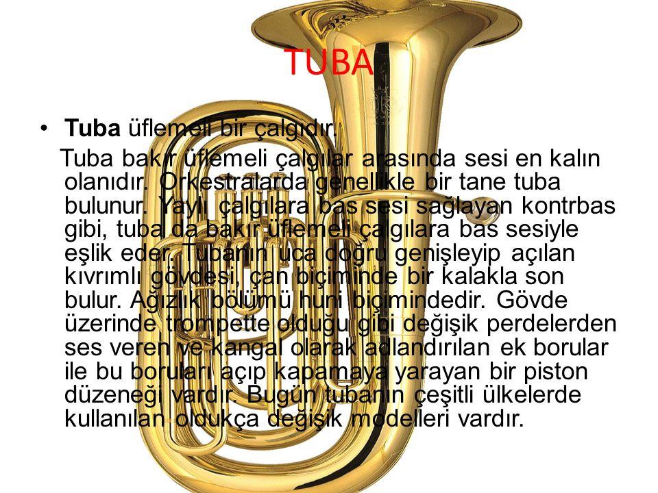 TUBA Tuba üflemeli bir çalgıdır.
