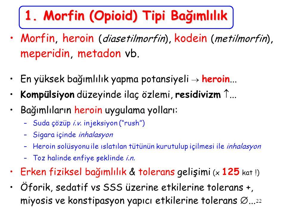 1. Morfin (Opioid) Tipi Bağımlılık