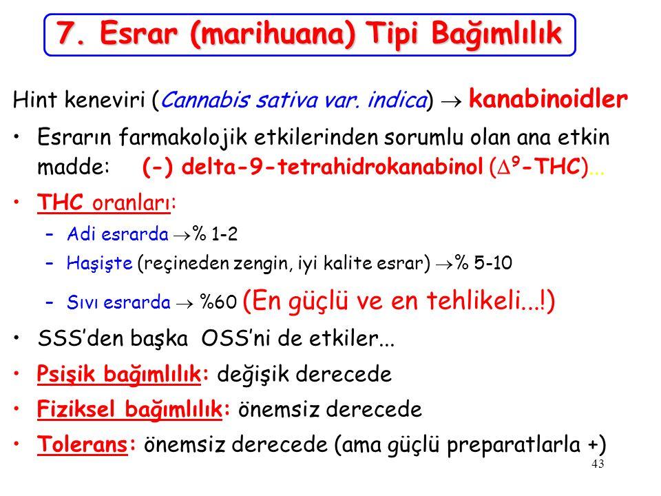7. Esrar (marihuana) Tipi Bağımlılık