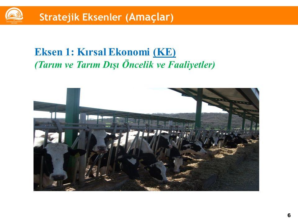 Eksen 1: Kırsal Ekonomi (KE)