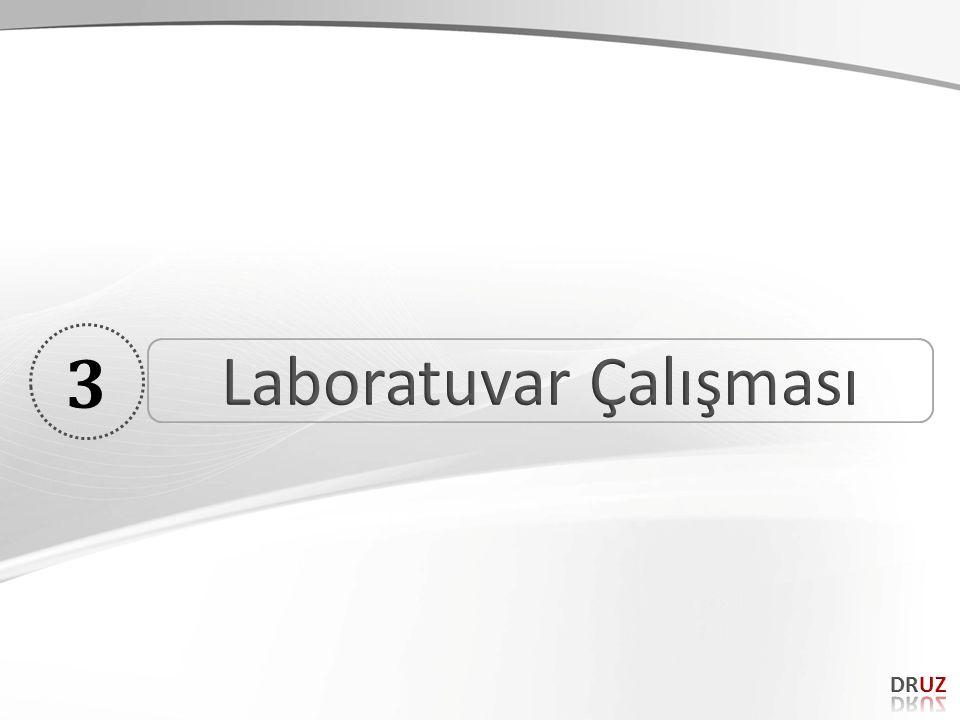 Laboratuvar Çalışması