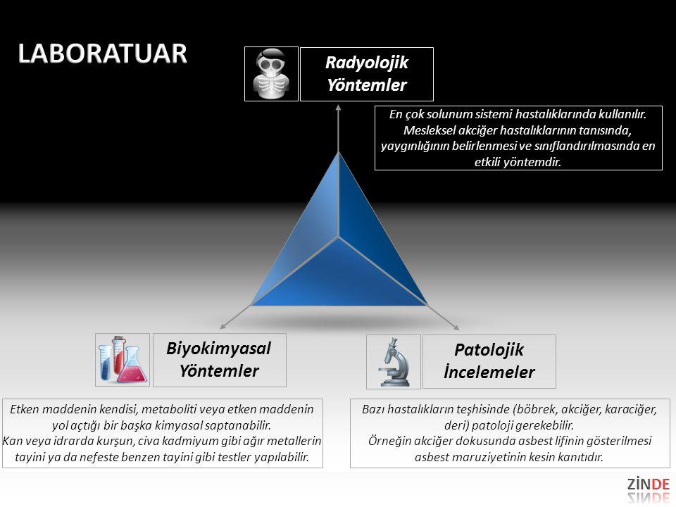Biyokimyasal Yöntemler Patolojik İncelemeler