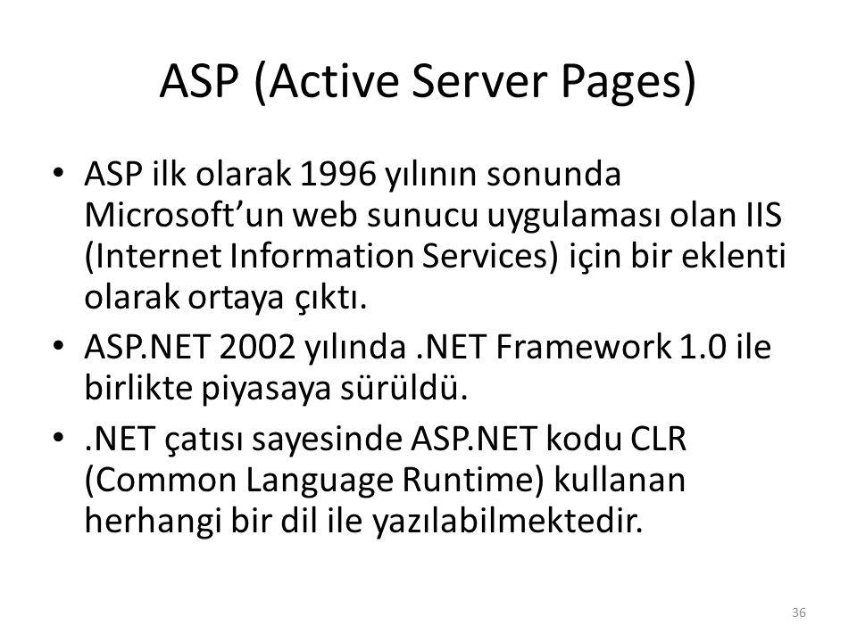 ASP (Active Server Pages)