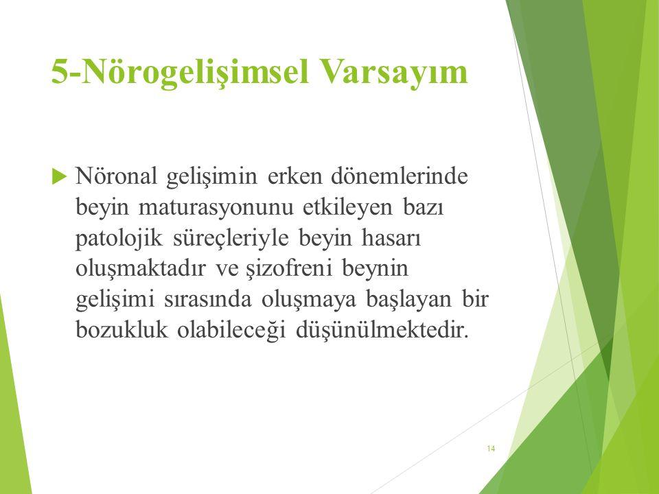 5-Nörogelişimsel Varsayım