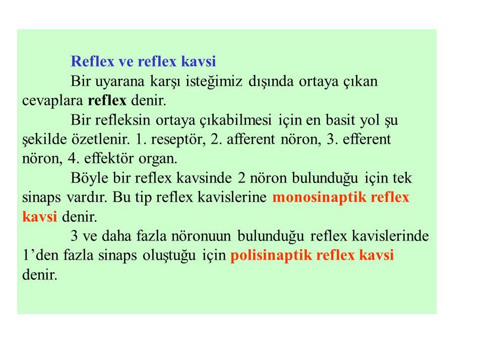 Reflex ve reflex kavsi Bir uyarana karşı isteğimiz dışında ortaya çıkan cevaplara reflex denir.