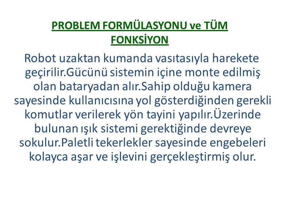 PROBLEM FORMÜLASYONU ve TÜM FONKSİYON