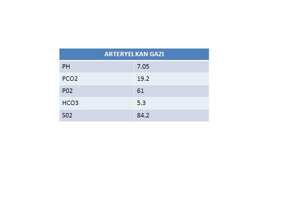 ARTERYEL KAN GAZI PH 7.05 PCO2 19.2 P02 61 HCO3 5.3 S02 84.2