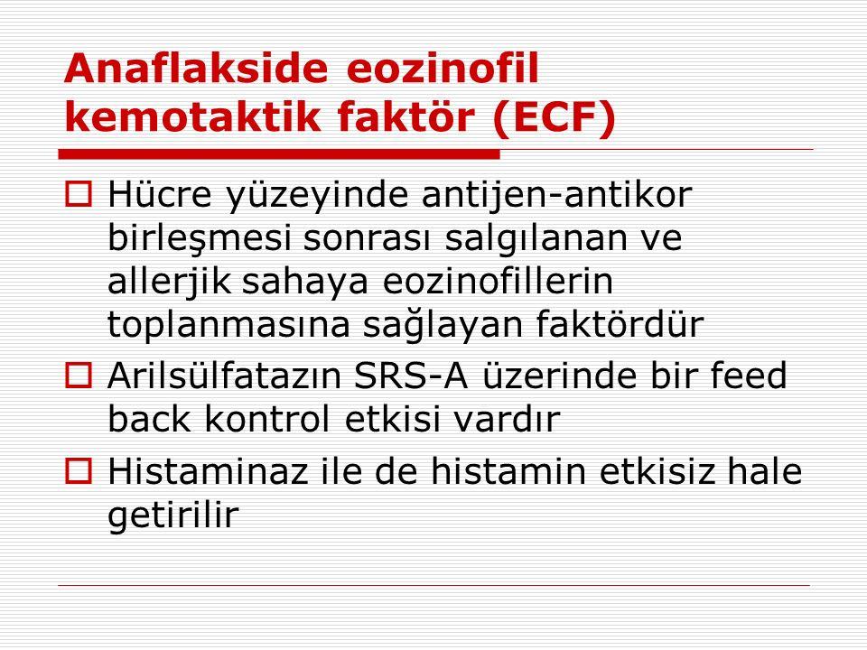 Anaflakside eozinofil kemotaktik faktör (ECF)