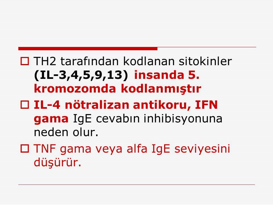 TH2 tarafından kodlanan sitokinler (IL-3,4,5,9,13) insanda 5