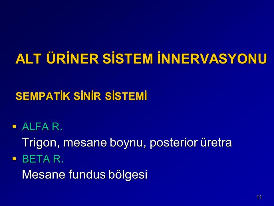 ALT ÜRİNER SİSTEM İNNERVASYONU SEMPATİK SİNİR SİSTEMİ