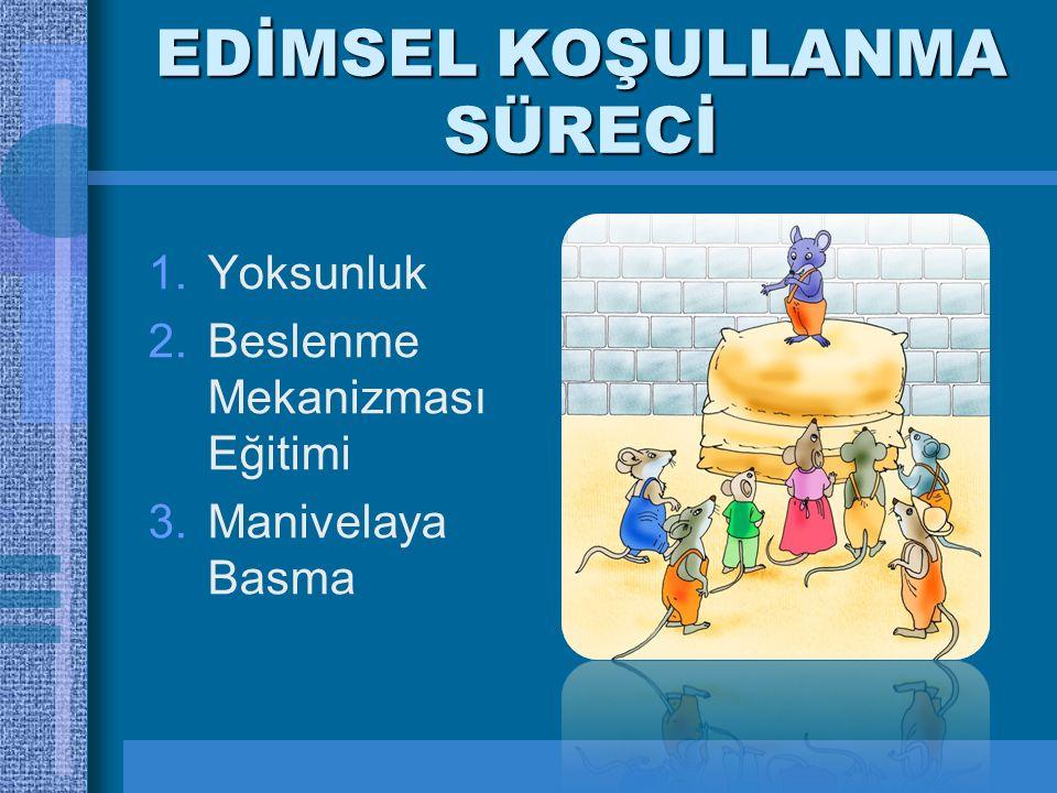 EDİMSEL KOŞULLANMA SÜRECİ