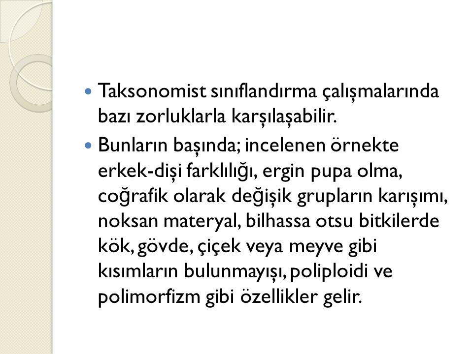 Taksonomist sınıflandırma çalışmalarında bazı zorluklarla karşılaşabilir.