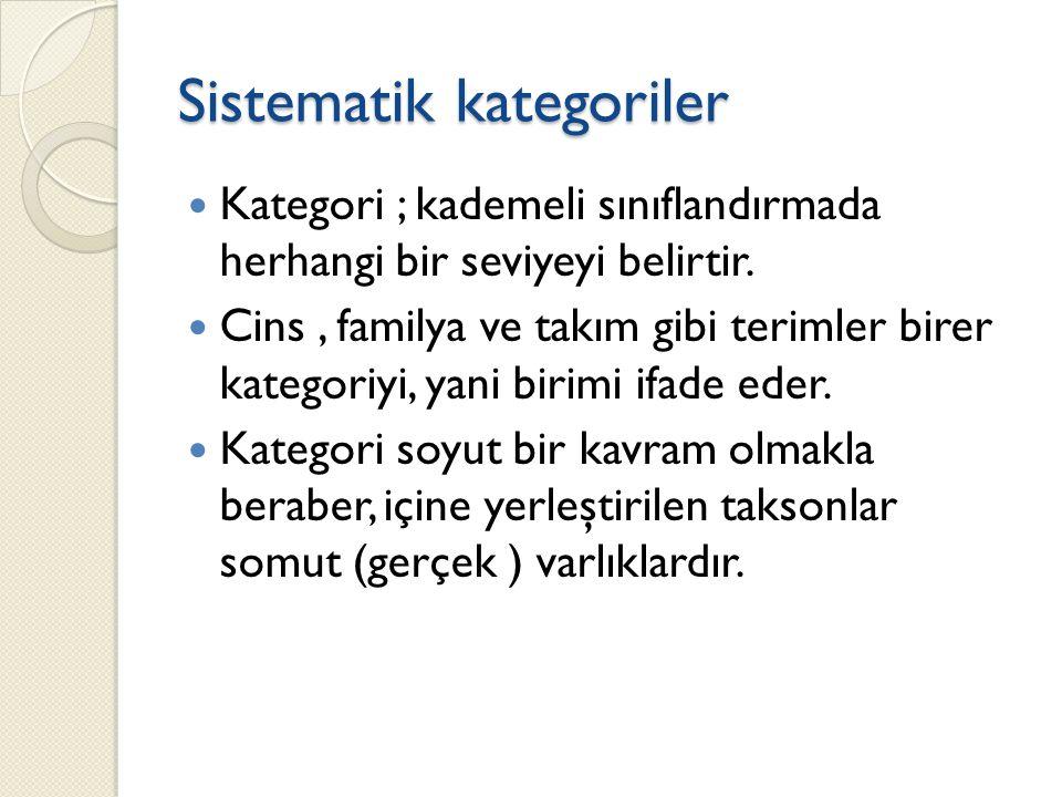 Sistematik kategoriler
