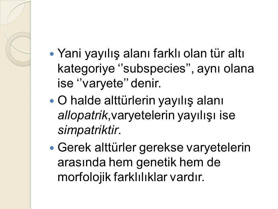 Yani yayılış alanı farklı olan tür altı kategoriye ''subspecies'', aynı olana ise ''varyete'' denir.