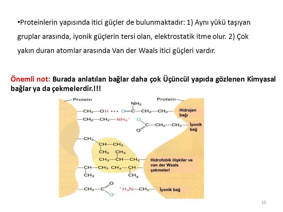 Proteinlerin yapısında itici güçler de bulunmaktadır: 1) Aynı yükü taşıyan gruplar arasında, iyonik güçlerin tersi olan, elektrostatik itme olur. 2) Çok yakın duran atomlar arasında Van der Waals itici güçleri vardır.