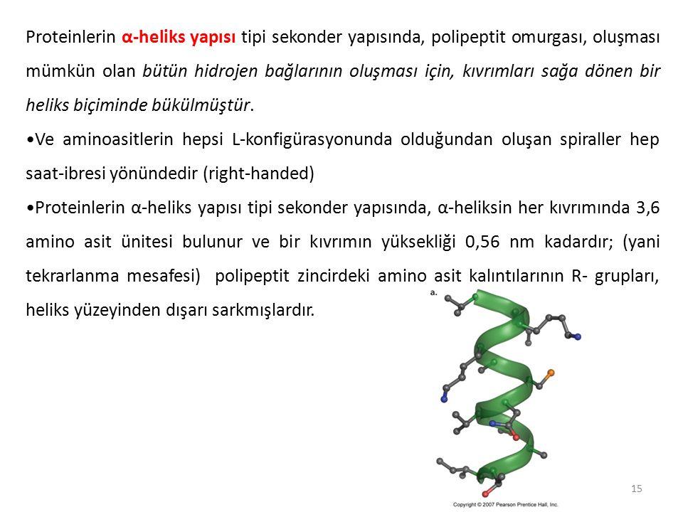 Proteinlerin α-heliks yapısı tipi sekonder yapısında, polipeptit omurgası, oluşması mümkün olan bütün hidrojen bağlarının oluşması için, kıvrımları sağa dönen bir heliks biçiminde bükülmüştür.