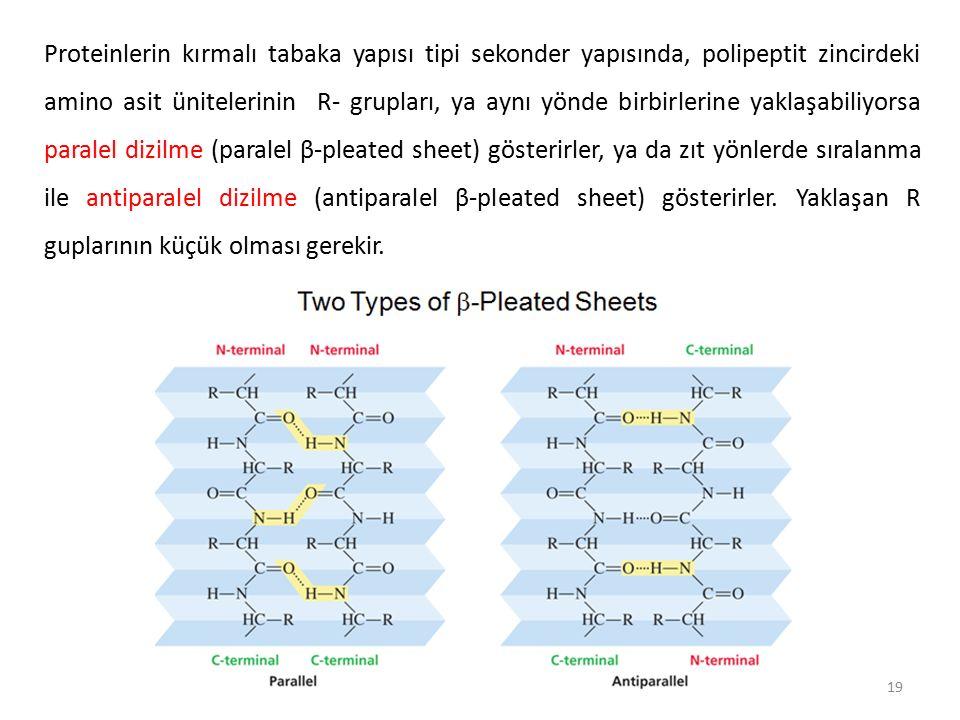 Proteinlerin kırmalı tabaka yapısı tipi sekonder yapısında, polipeptit zincirdeki amino asit ünitelerinin R- grupları, ya aynı yönde birbirlerine yaklaşabiliyorsa paralel dizilme (paralel β-pleated sheet) gösterirler, ya da zıt yönlerde sıralanma ile antiparalel dizilme (antiparalel β-pleated sheet) gösterirler.