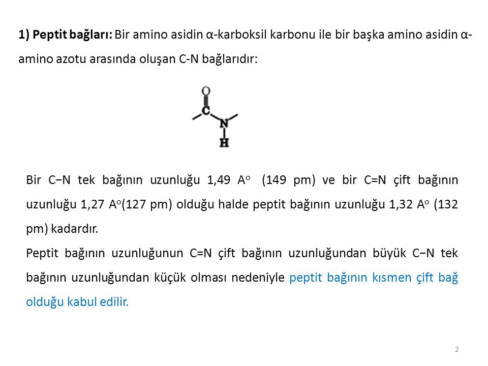 1) Peptit bağları: Bir amino asidin α-karboksil karbonu ile bir başka amino asidin α-amino azotu arasında oluşan C-N bağlarıdır:
