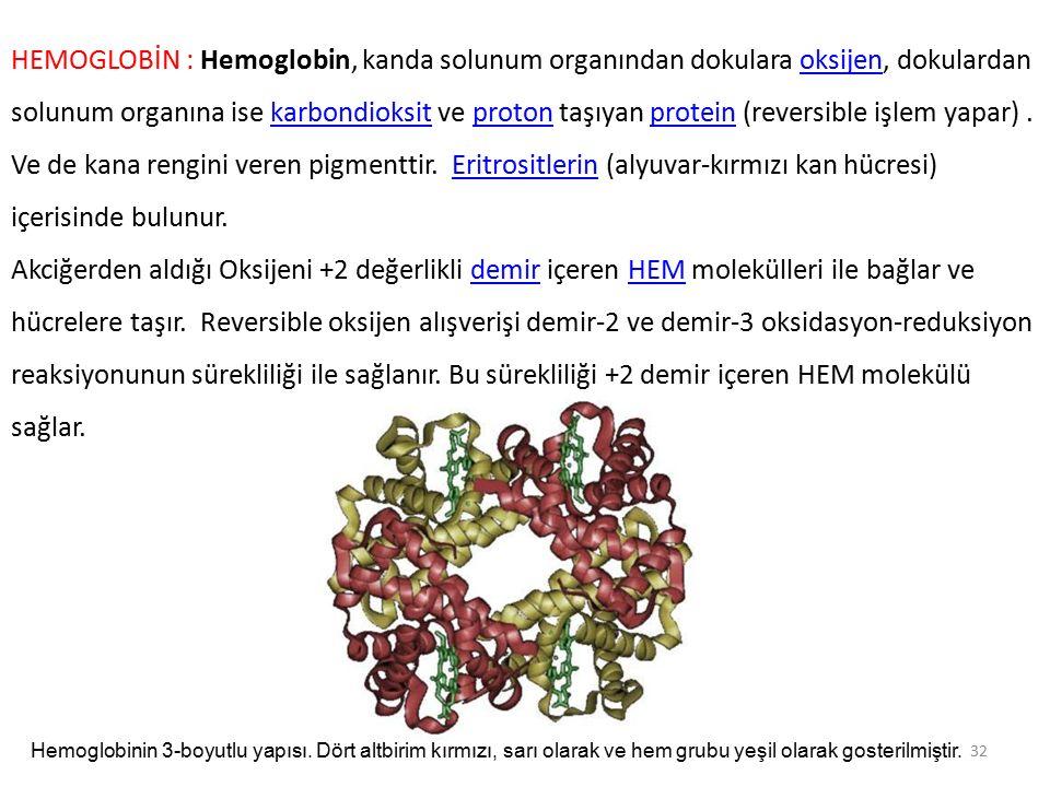 HEMOGLOBİN : Hemoglobin, kanda solunum organından dokulara oksijen, dokulardan solunum organına ise karbondioksit ve proton taşıyan protein (reversible işlem yapar) . Ve de kana rengini veren pigmenttir. Eritrositlerin (alyuvar-kırmızı kan hücresi) içerisinde bulunur.