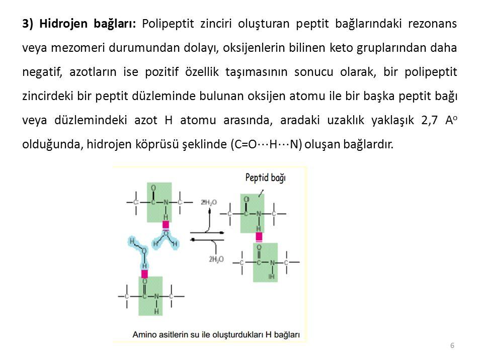 3) Hidrojen bağları: Polipeptit zinciri oluşturan peptit bağlarındaki rezonans veya mezomeri durumundan dolayı, oksijenlerin bilinen keto gruplarından daha negatif, azotların ise pozitif özellik taşımasının sonucu olarak, bir polipeptit zincirdeki bir peptit düzleminde bulunan oksijen atomu ile bir başka peptit bağı veya düzlemindeki azot H atomu arasında, aradaki uzaklık yaklaşık 2,7 Ao olduğunda, hidrojen köprüsü şeklinde (C=O⋅⋅⋅H⋅⋅⋅N) oluşan bağlardır.