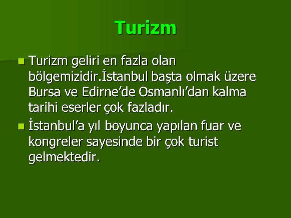 Turizm Turizm geliri en fazla olan bölgemizidir.İstanbul başta olmak üzere Bursa ve Edirne'de Osmanlı'dan kalma tarihi eserler çok fazladır.