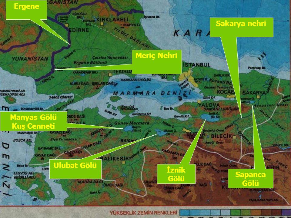 Ergene Sakarya nehri Meriç Nehri Manyas Gölü Kuş Cenneti Ulubat Gölü İznik Gölü Sapanca Gölü