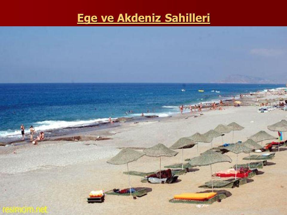 Ege ve Akdeniz Sahilleri