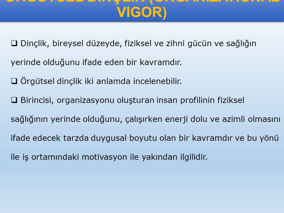 ÖRGÜTSEL DİNÇLİK (ORGANİZATIONAL VIGOR)