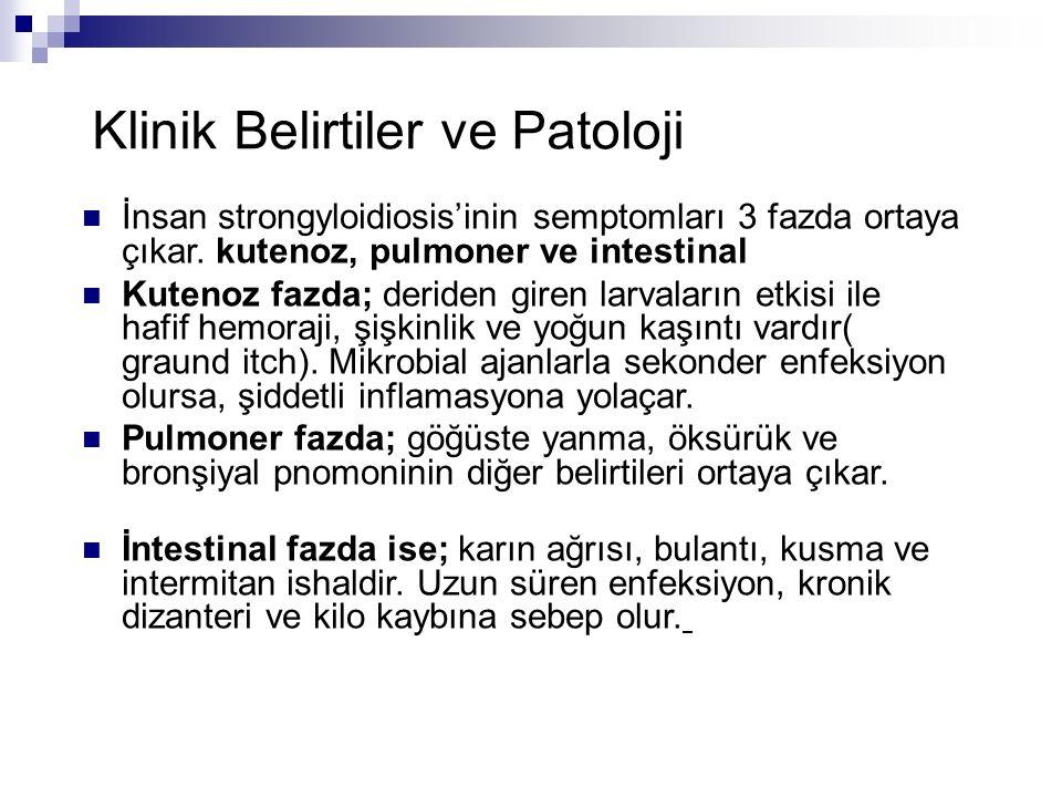 Klinik Belirtiler ve Patoloji