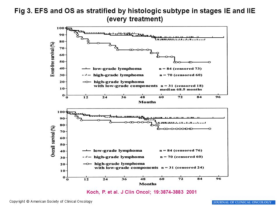Fig 3. EFS and OS as stratified by histologic subtype in stages IE and IIE (every treatment)