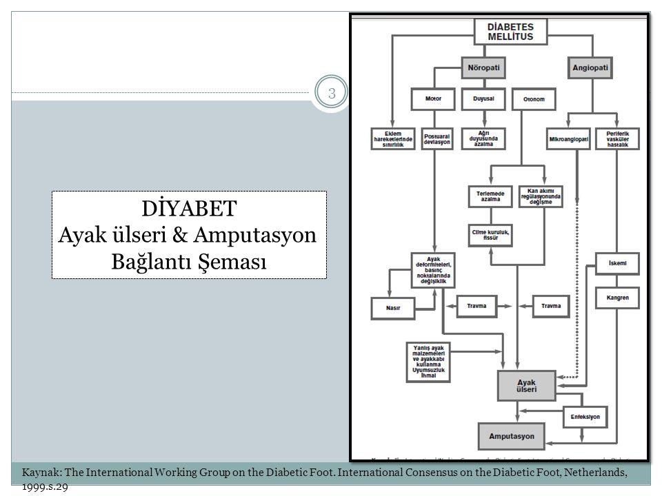 Ayak ülseri & Amputasyon Bağlantı Şeması