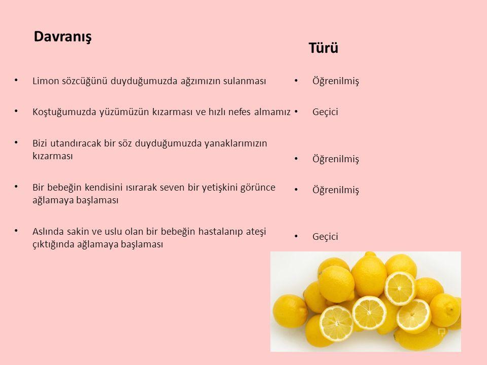 Davranış Türü Limon sözcüğünü duyduğumuzda ağzımızın sulanması