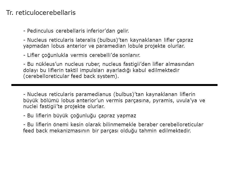 Tr. reticulocerebellaris